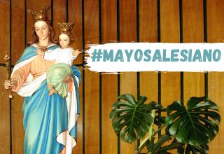 #MayoSalesiano